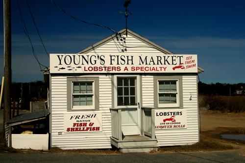 Fish-Market-Shack.jpg