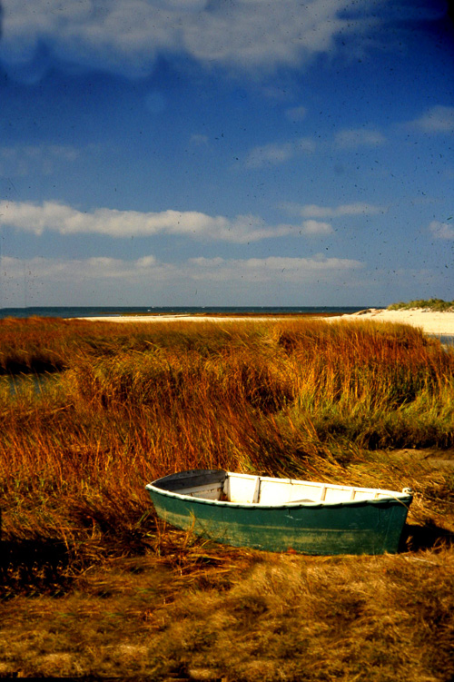 Lonly-Boat-On-Marsh.jpg