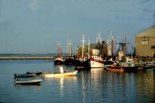 P-Town-Boats--1.jpg