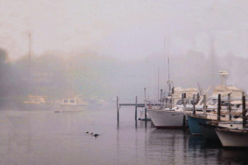 Wychmere-Harbor-In-Fog-.jpg