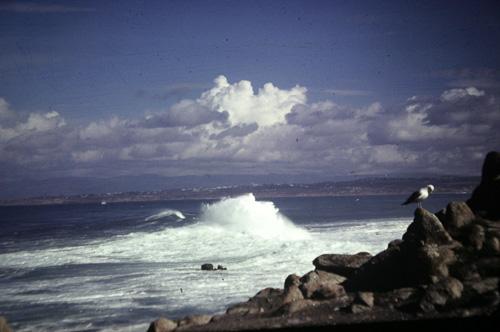 -Calif-Shoreline.jpg