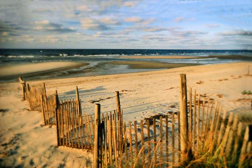 Sand-Fence.jpg