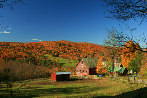 Maple-Groe-Farm-In-Vermont.jpg
