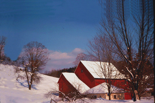 Winter-At-Sherbourne-FArm.jpg